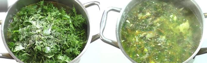 Отправляем в суп щавель