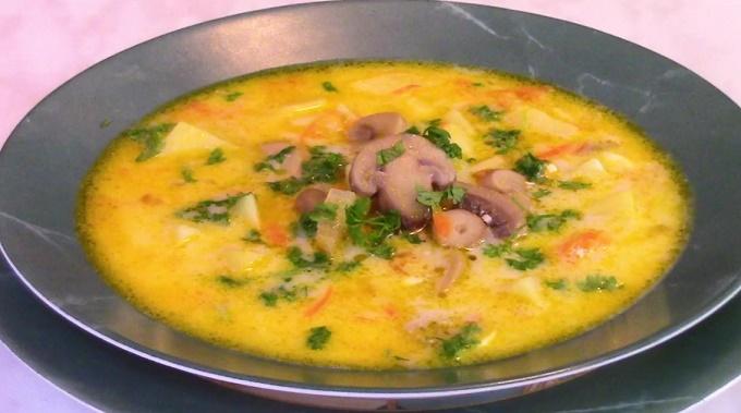Суп из шампиньонов и плавленного сыра