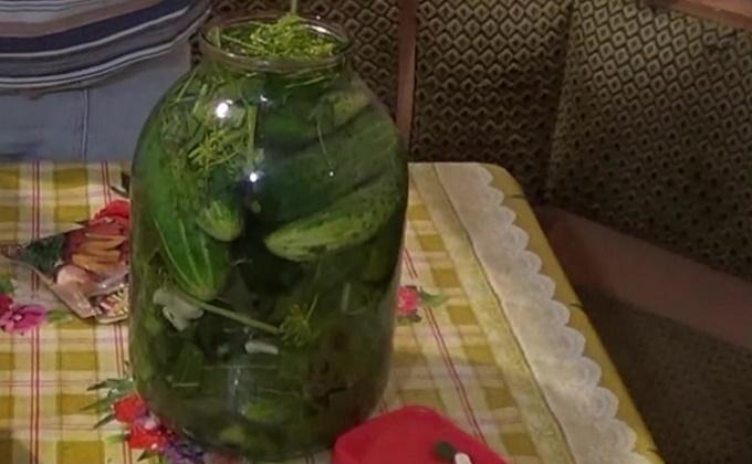 Рецепт малосольных огурцов на 3 литра воды