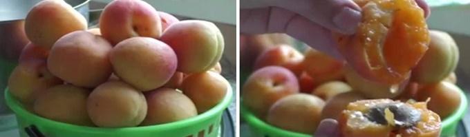 Сочные абрикосы